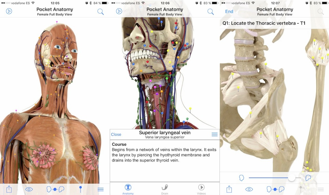 Pocket Anatomy iPhone